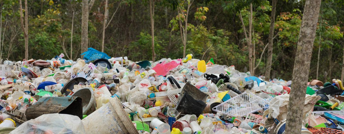 Umweltmanagement von B&S Objektservice